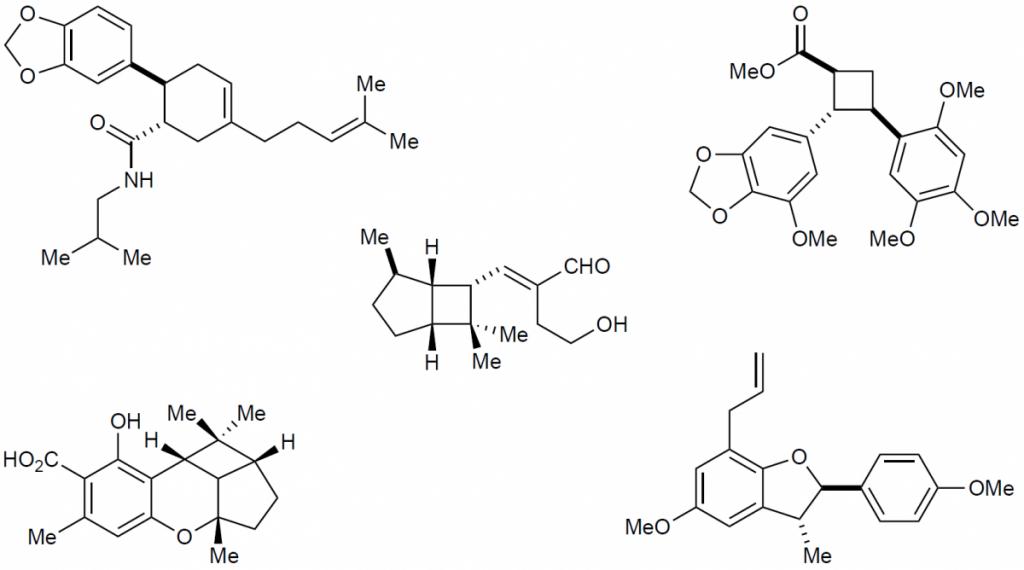Yoon Chemistry